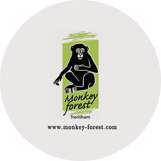 Visit the Monkey Forest near The Grange